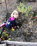 Livvy's flower garden